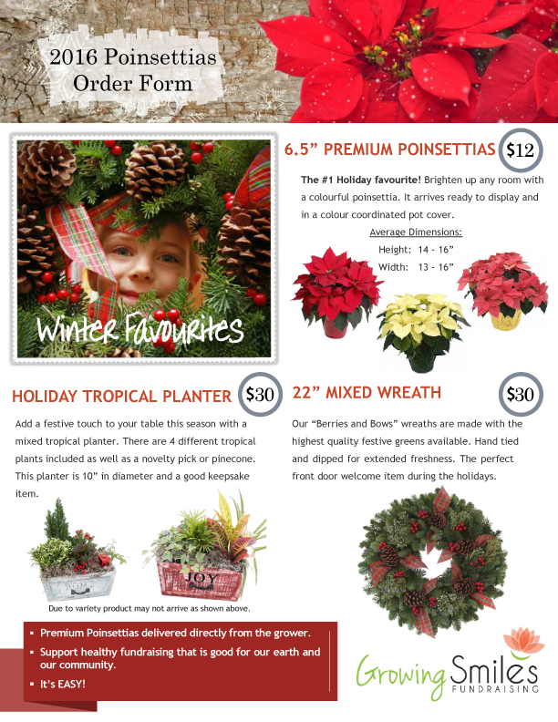 Poinsettias & Wreaths